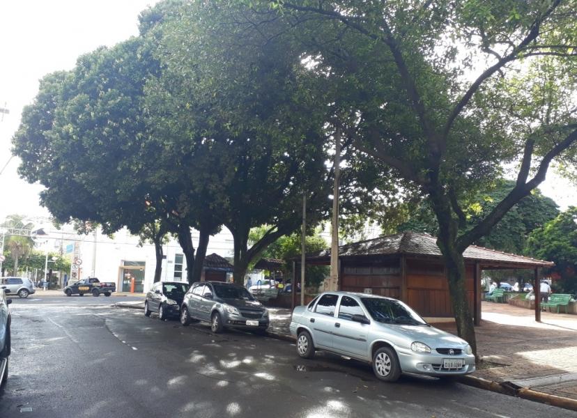 Sujeira de andorinhas e pombos na Pra�a Francisco Barreto � questionada por vereadores